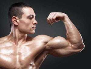 Testosterone has an important role in muscle building.